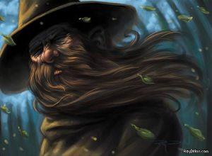 Radagast barba ao vento